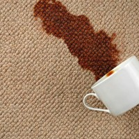 office carpet cleaning service Ottawa